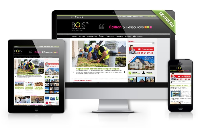 BOISPE.FR le nouveau site web de la construction bois et de la transition énergétique pour les PROS
