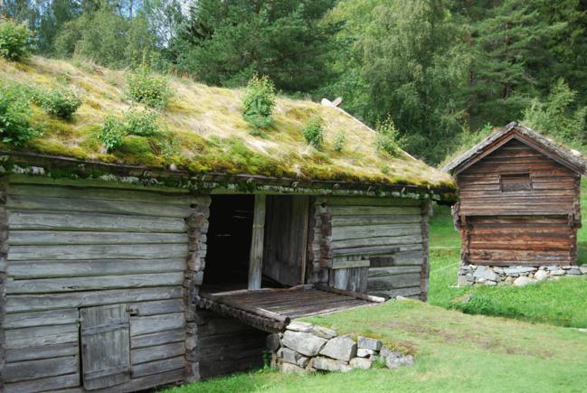 Les toitures végétalisées sont utilisées depuis très longtemps en Scandinavie. On y laisse pousser des arbustes et des petits résineux.