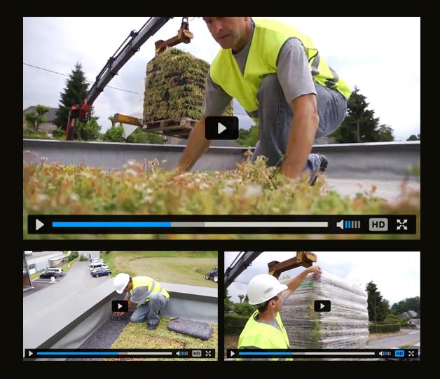 Vidéo : la végétalisation des toitures terrasses en construction ossature bois