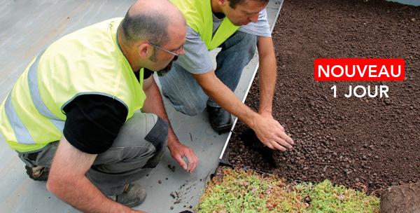 Formation Finitions, revêtements et sécurité des toitures terrasses sur maisons à ossature bois