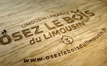 """""""Osez le bois du Limousin"""", une nouvelle marque pour la filière"""